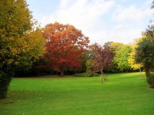 Stanley Park Walk Alverstoke