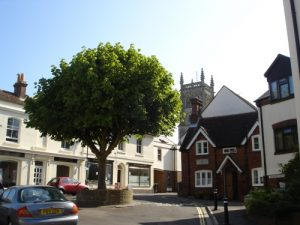Alverstoke Village & The Crescent with Lesley Burton (Event from 2016)