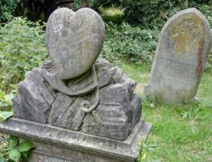 Funerary and Flora at Anns Hill Cemetery (Event from 2020)