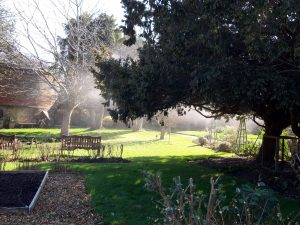 36. Shore Leave Haslar: Horticultural Therapy in an Historic Garden